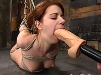 Bound hottie gets caned flogged tickled and forced to cum.