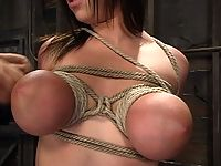 Hogtied model Whitney is forced to the limits of pain