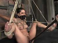 Bobbie Starr tied up ass fucked forced to cum and dominatated