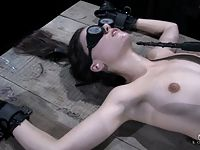 sasha grey punished in extreme steel bondage