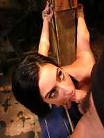 Cute girl in bondage and fucked