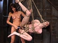 Mistress Lexi Bardot gently warms up Her slave before ramming him