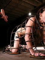 Sasha Grey gets tied up, gagged, and shocked to orgasm